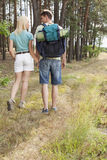 Rear view of young hiking couple holding hands while walking in forest Stock Photography