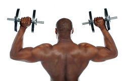Rear view of a young male bodybuilder royalty free stock photos