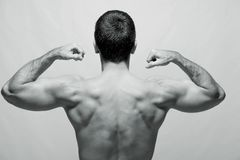 Rear view of a young male bodybuilder Royalty Free Stock Images