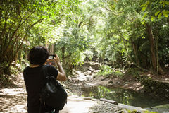 Rear view of young male hiker photographing in forest, Koh Pha Ngan, Thailand Royalty Free Stock Image