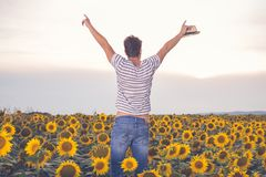 Happy young farmer standing in sunflower field. Rear view of young man with hands up standing in sunflower field. Agriculture and summertime concepts Stock Images