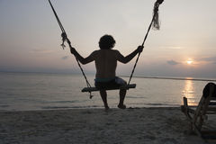 Rear view of young man swinging on beach at sunset stock image