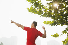 Rear view of young muscular man stretching by a tree, arms raised and fingers pointing towards the sky in Beijing, China with lens Royalty Free Stock Images