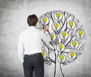 Rear view of young professional who is drawing a tree with light bulbs on the concrete wall. Light bulbs as a concept of new busin Stock Image