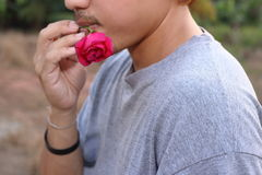 Rear view of young romantic man is holding a red rose in his mouth on nature blurred background. Love and romance Valentine`s day. Concept Royalty Free Stock Images