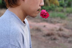 Rear view of young romantic man is holding a red rose in his mouth on nature blurred background. Love and romance Valentine`s day. Concept Stock Image