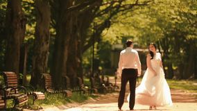 Rear view of the young stylish couple of newlyweds holding hands and walking along the beautiful sunny park. Gorgeous stock video