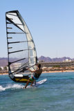 Rear view of young windsurfer Royalty Free Stock Photo