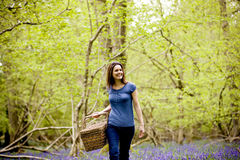 Rear view of a young woman carrying a wicker basket in a field of bluebells Stock Photo
