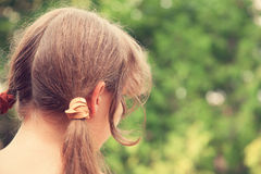 Rear view of young woman with two ponytails Stock Image
