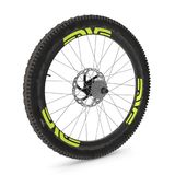 Rear wheel of a mountain bike  on white. 3D illustration. Rear wheel of a mountain bike  on white background. 3D illustration Royalty Free Stock Image