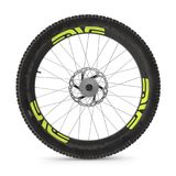 Rear wheel of a mountain bike  on white. 3D illustration. Rear wheel of a mountain bike  on white background. 3D illustration Stock Images