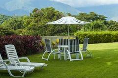 Landscaped garden in summer Stock Photos