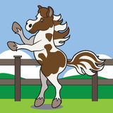 Rearing Cartoon Horse. Young horse with flowing mane rearing in fenced pasture Stock Photos
