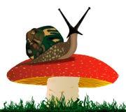 Rearing Snail Royalty Free Stock Photo