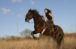 Rearing stallion and girl Stock Images