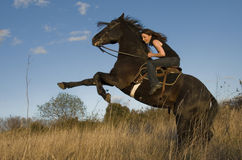 Rearing stallion and girl Royalty Free Stock Photography