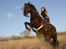 Rearing stallion and girl Royalty Free Stock Photo