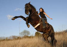 Rearing stallion and girl Royalty Free Stock Photos