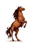 Rearing wild horse vector sketch symbol. Horse or wild stallion rearing. Arabian brown mustang trotter on rears. Vector symbol for equine sport races or rides Royalty Free Stock Photo