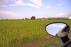 Rearviewmirror Stock Images