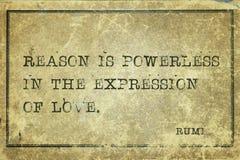 Reason is Rumi Royalty Free Stock Photography