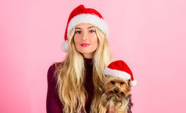 Reasons to love christmas with pets. Girl attractive blonde hold dog pet pink background. Woman with puppy wear santa. Hat. Celebrate christmas with pets. Ways royalty free stock photo