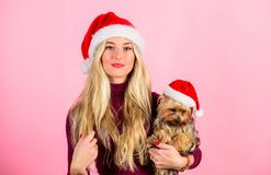 Reasons to love christmas with pets. Ways to have merry christmas with pets. Girl attractive blonde hold dog pet pink. Background. Woman with puppy wear santa stock images