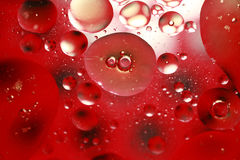 Reb bubbles Royalty Free Stock Images