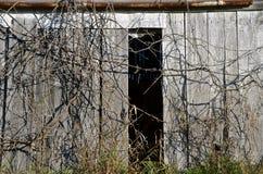 Reb- und der Bürstenabdeckungalte Scheunentür Stockbilder