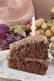 Rebanada alemana de la torta de chocolate Foto de archivo libre de regalías
