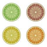 Rebanada anaranjada del pomelo del limón de la cal Imagen de archivo libre de regalías