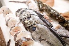 Rebanada de atún y de salmones en el hielo en el mercado de pescados fotos de archivo
