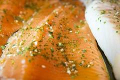 Rebanada de color salmón sin procesar Fotos de archivo libres de regalías