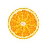 Rebanada de la naranja del vector citrus stock de ilustración