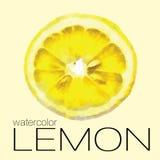 Rebanada de la pintura de la acuarela de limón Imágenes de archivo libres de regalías
