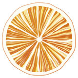 Rebanada de naranja Fotos de archivo