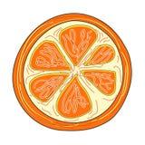 Rebanada de naranja brillante anaranjada de la vitamina jugosa ilustración del vector
