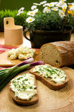 Rebanada de pan separada con queso de las ovejas foto de archivo libre de regalías