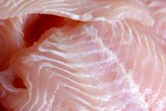 Rebanada de pescados Imagenes de archivo