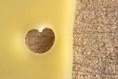Rebanada de queso con un agujero en la forma de un corazón en un de madera Imágenes de archivo libres de regalías