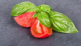 Rebanada de tomate con las hojas de la albahaca Fotografía de archivo libre de regalías