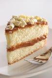Rebanada de torta acodada Imagen de archivo libre de regalías