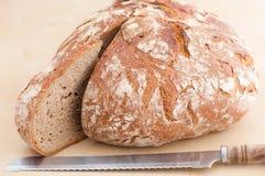 Rebanada del pan de Brown Imagen de archivo libre de regalías