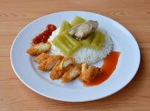 Rebanada del pollo frito y pepino amargo hervido con el hueso del cerdo en el arroz Imagen de archivo libre de regalías