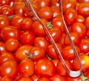 Rebanada del tomate Fotografía de archivo libre de regalías