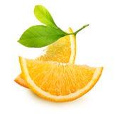 Rebanadas anaranjadas de la fruta aisladas. Imagen de archivo libre de regalías