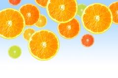 Rebanadas anaranjadas en azul fotografía de archivo libre de regalías