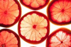 Rebanadas de Grapfruit Fotos de archivo libres de regalías