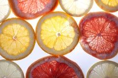 Rebanadas de la fruta cítrica Fotos de archivo